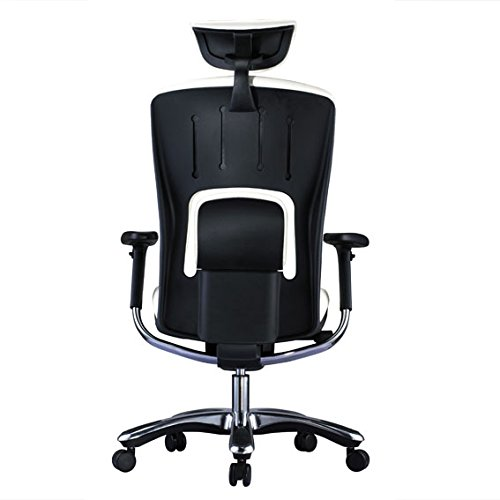 GM Seating Ergolux