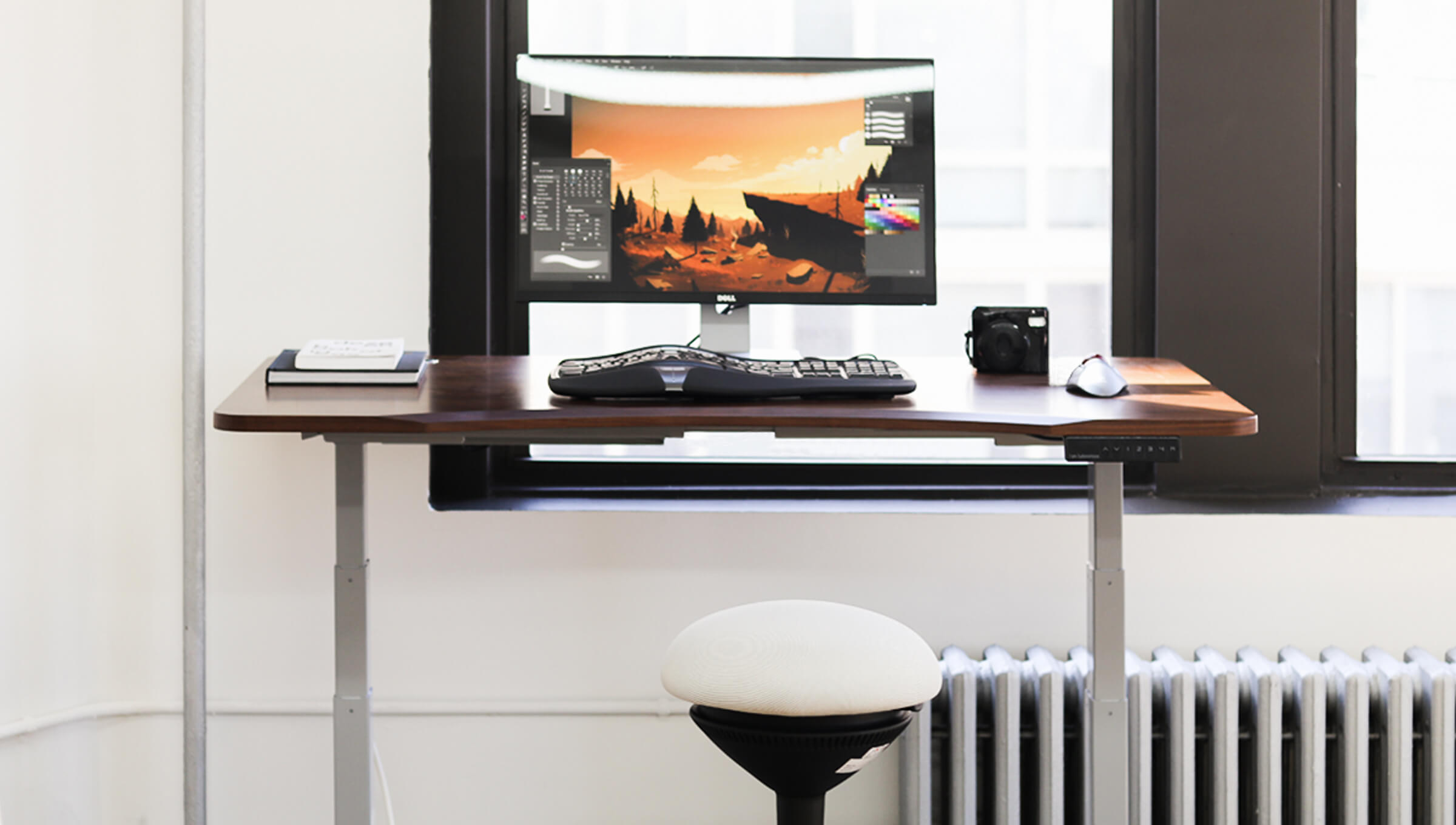Best electric standing desk- Ergolux Single Motor Standing Desk