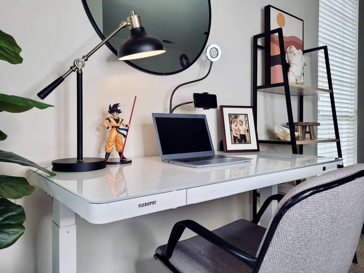 Flexispot standing desk under 300