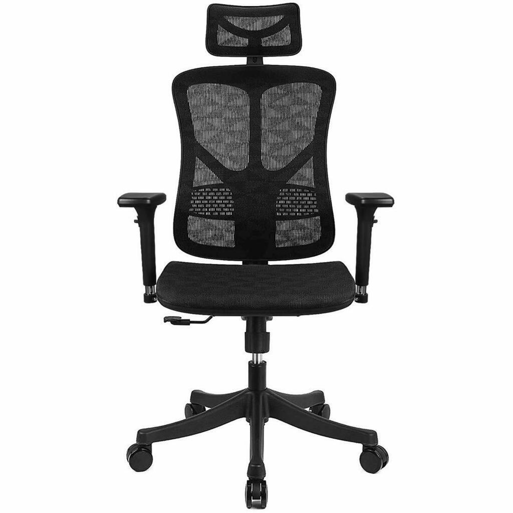 Argomax Ergonomic Mesh Office Chair High Back - best office chair for lower back pain