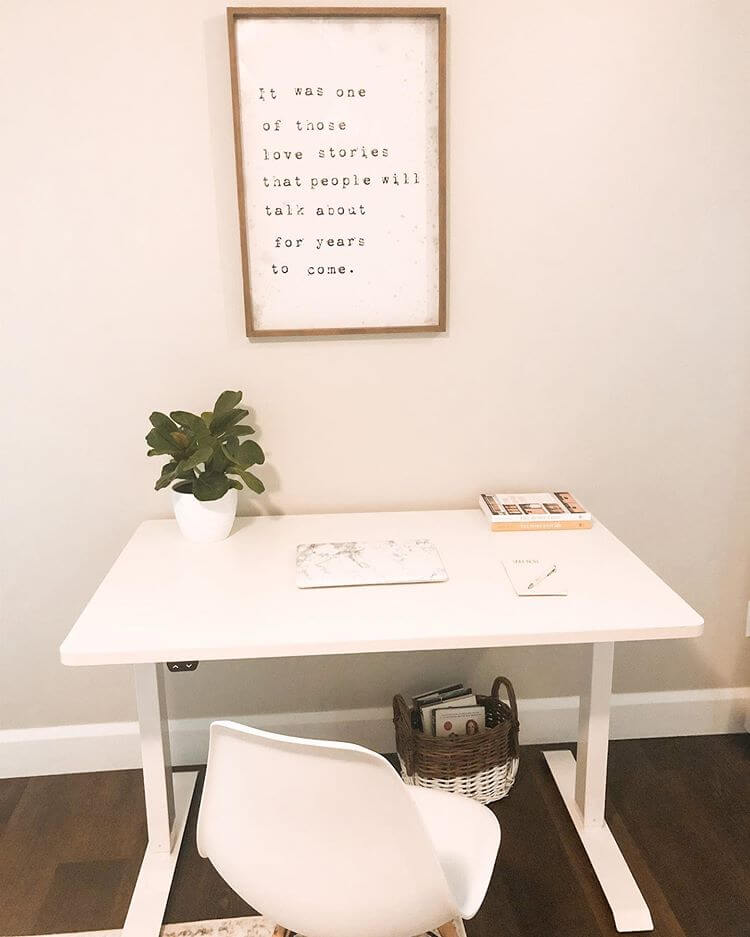 Flexispot electric standing desk 48