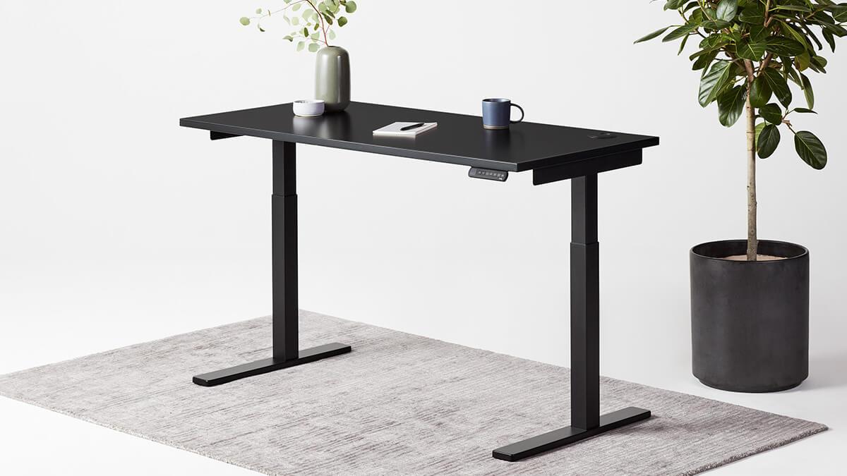 best standing desk in canada