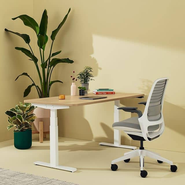 Solo Sit-To-Stand desk review